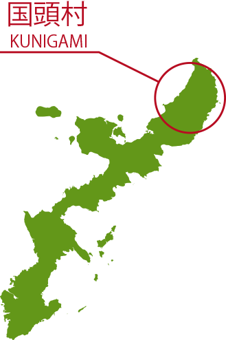 国頭村 KUNIGAMI